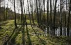 Uroki Bolimowskiego Parku Krajobrazowego